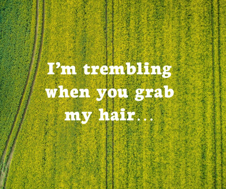 I'm trembling when you grab my hair…