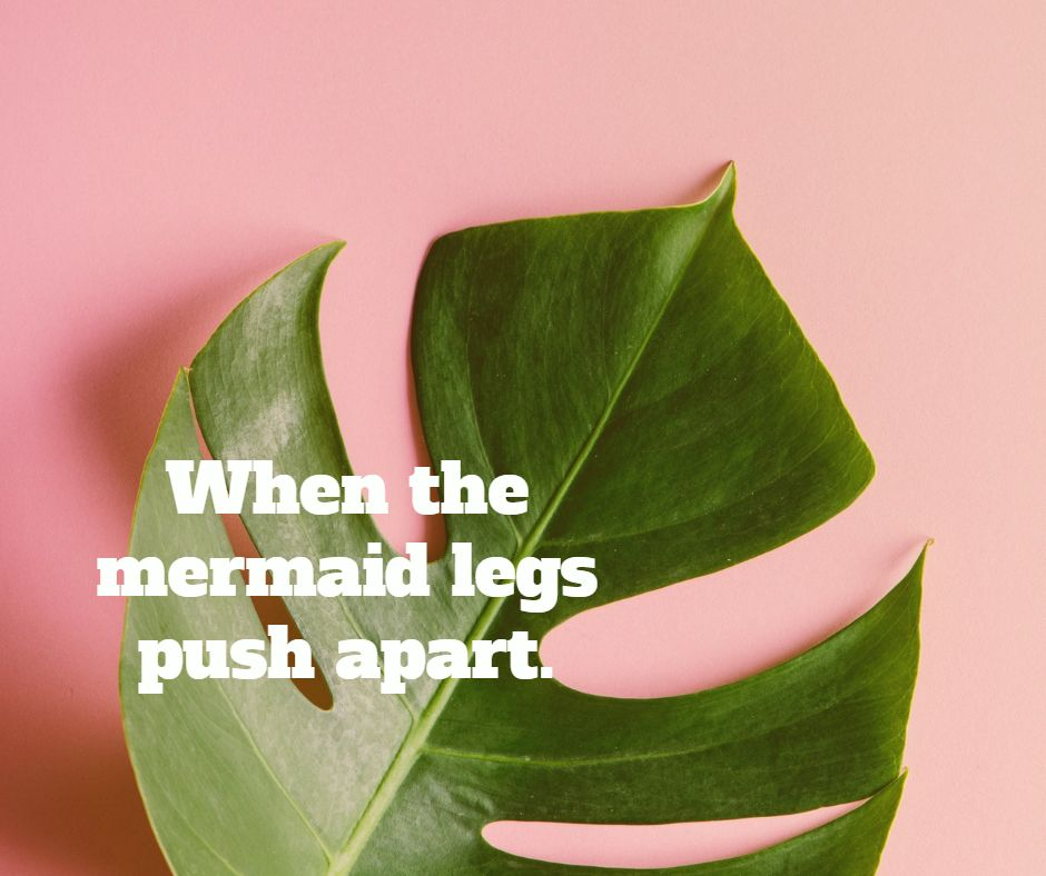 When the mermaid legs push apart.